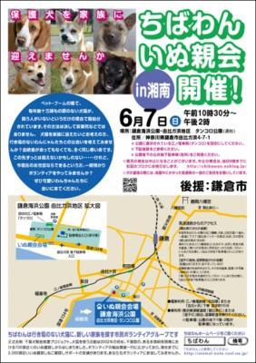 syonan_inuoyakai_poster-1.jpg