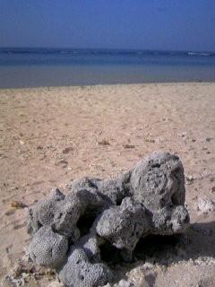 081115海、五島に_1510~01