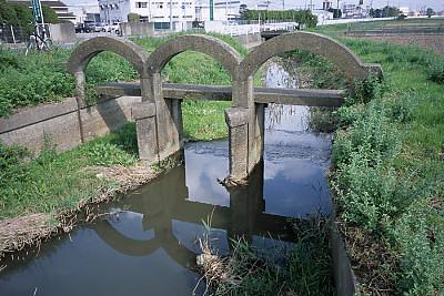 200610_kawagoe01s.jpg