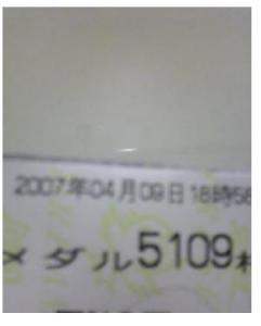 20070410000351.jpg