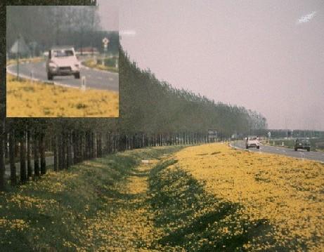 20050207212518.jpg