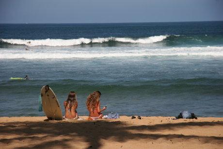 2008.2.13~ BS-i  ハワイ 390_1_1