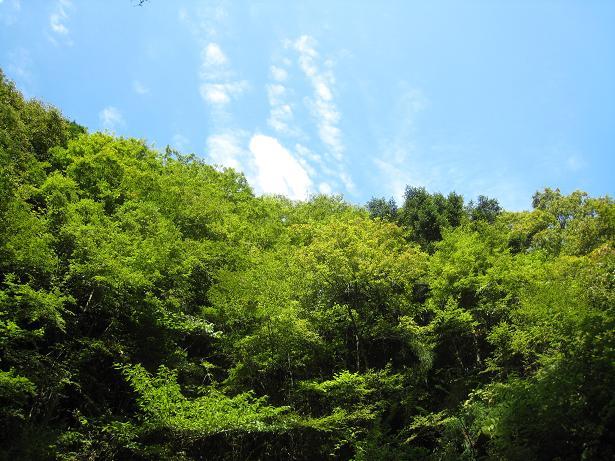 秋空と夏山