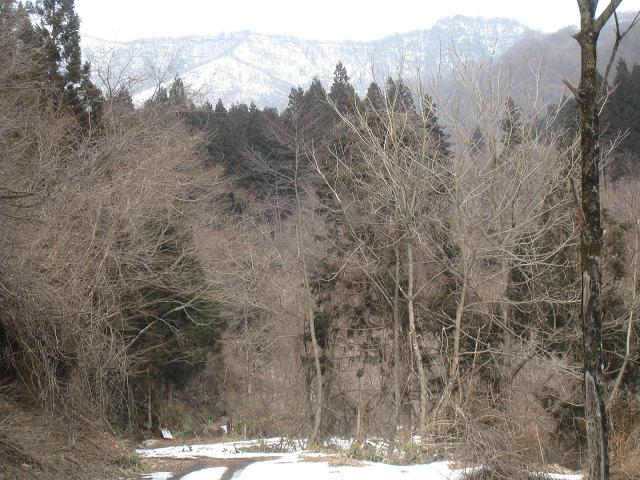 雪山と林道