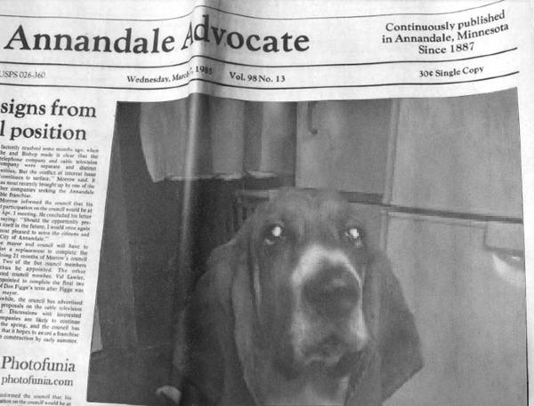 新聞にジャム