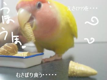 すいっち4