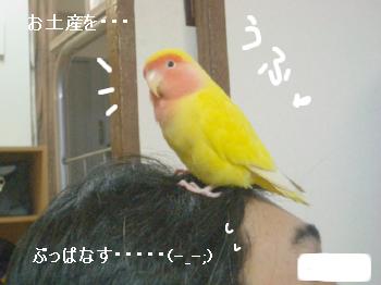 すいっち5