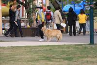 函館公園 057b