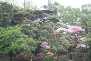 函館公園 sa 123b