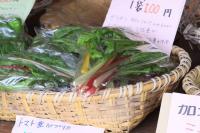 政田農園 107