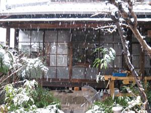 2008.2.9雪blog01