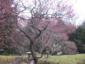万博公園迎賓館blog01