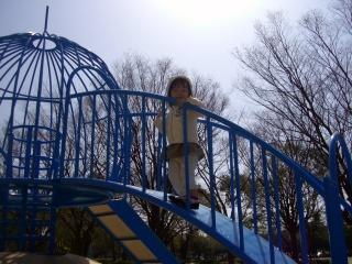 公園デート7