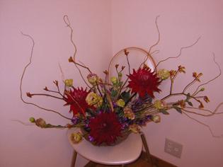 flower brog 30