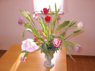 flower brog 34