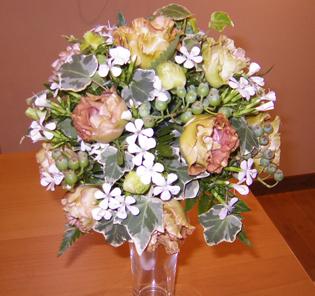 flower brog 39
