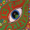 Psychedelic Sounds Of The 13th Floor Elevators