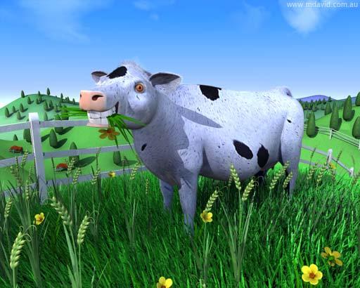 cow5.jpg