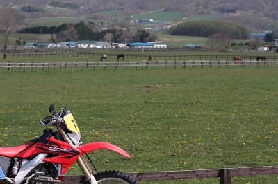 牧場とCRF