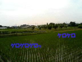 DCF_0092.jpg