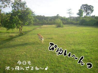 20080223-3.jpg