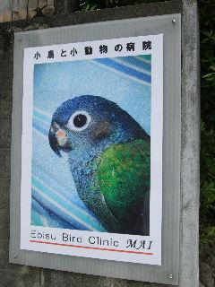 2008_0926ぷーすけ0001