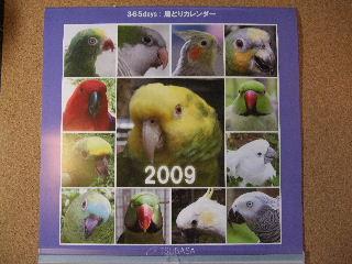 2008_1121ぷーすけ0052