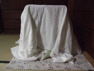 2008_1121ぷーすけ0032