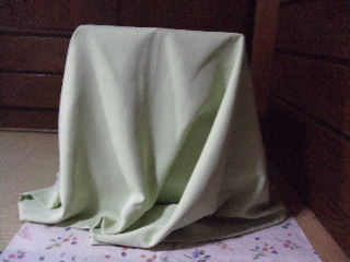 2008_1121ぷーすけ0031