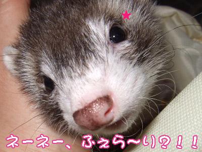 nomurahospital04_20080225212013.jpg