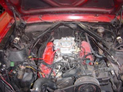 DSC05874_convert_20090619000003.jpg