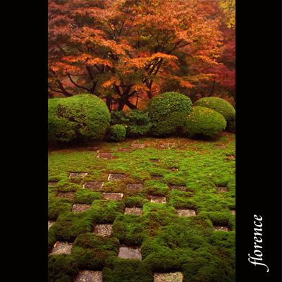 京都081101_edited-1