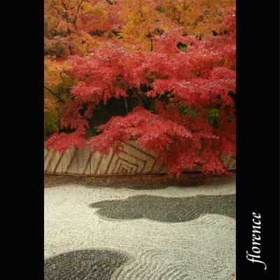 京都081102_edited-2