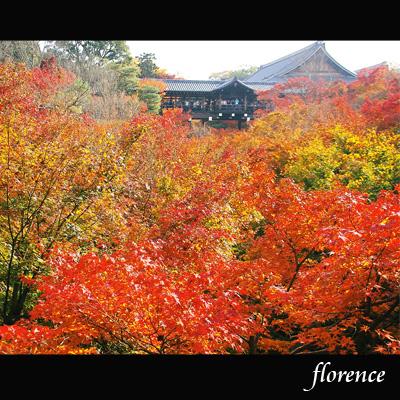 京都081103_edited-1