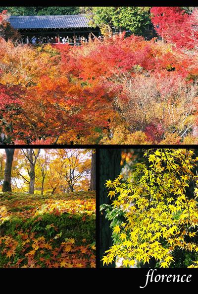 京都081104_edited-1