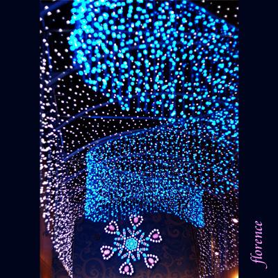 新宿夜景081201