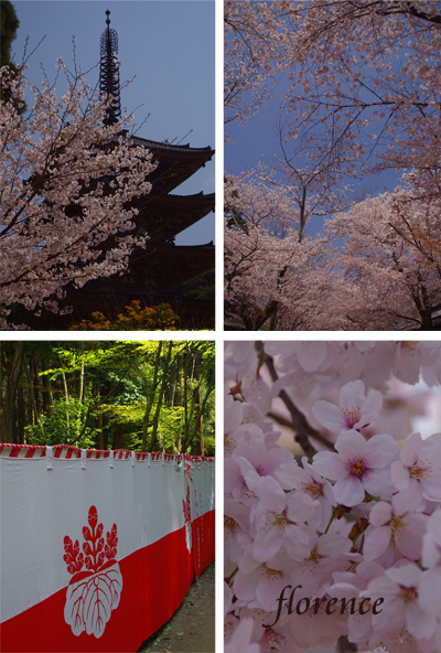 醍醐寺090302_edited-1