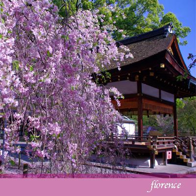 平野神社090403_edited-1