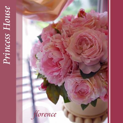 プリンセスハウス090600103_edited-1