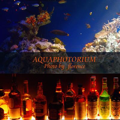 アクアフォトリウム090801_edited-1