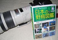 野鳥図鑑を買いました。