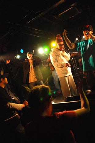 キングコブラ 21