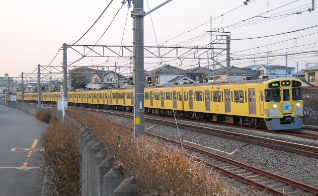 DSC_6779.jpg