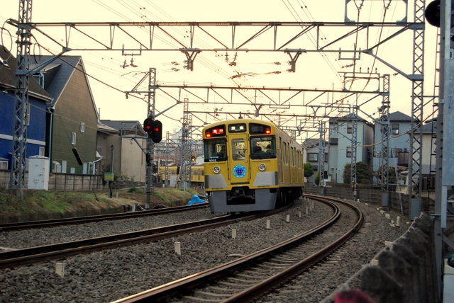 DSC_6796.jpg