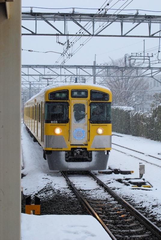 DSC_7471.jpg