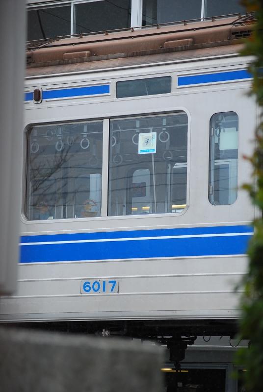 DSC_7568.jpg
