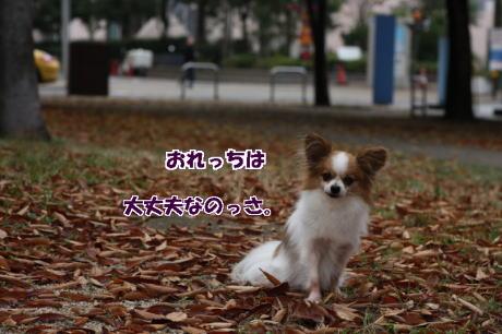 IMG_7800-777.jpg