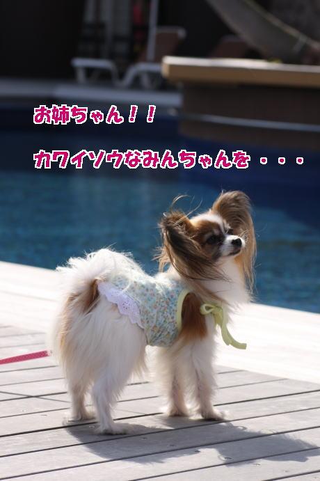 IMG_9607--.jpg