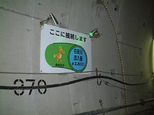 20060616091845.jpg