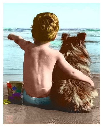 boyanddog coler